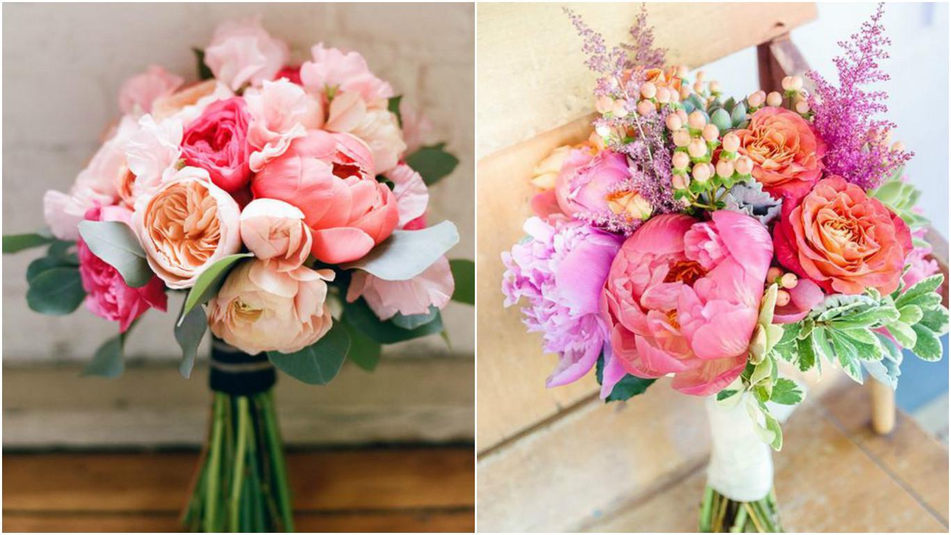 Фото розовых пионов