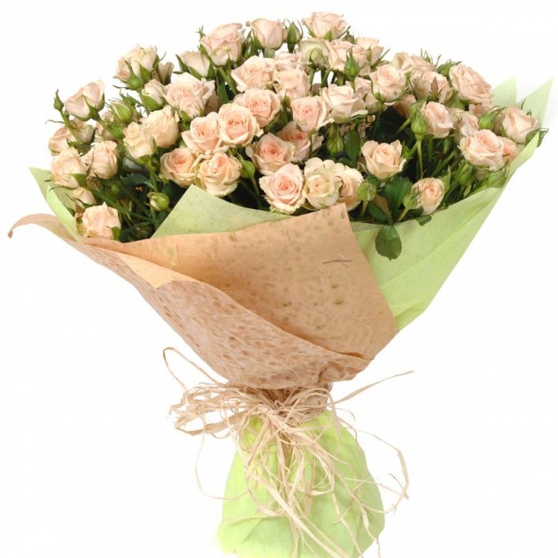 Кустовые розы в туле купить