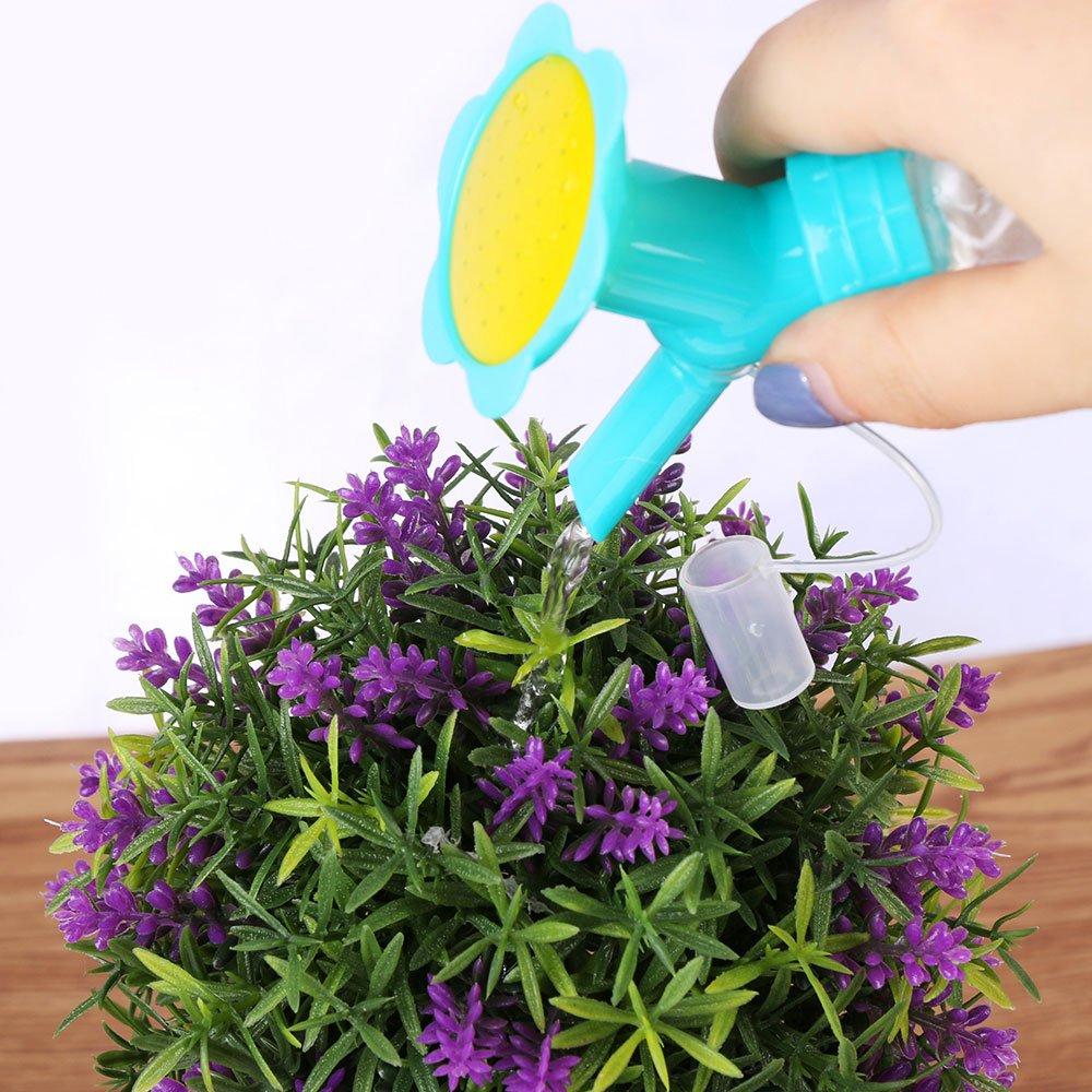 Как ухаживать за цветами в корзине или шляпной коробке с губкой