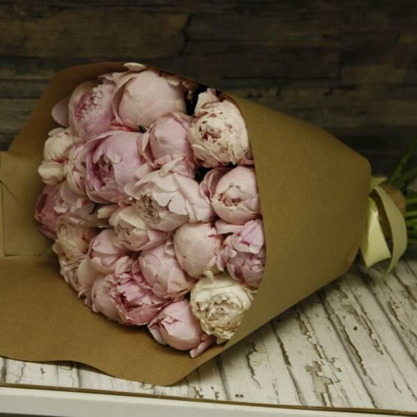 25 пионов розовых сара бернар