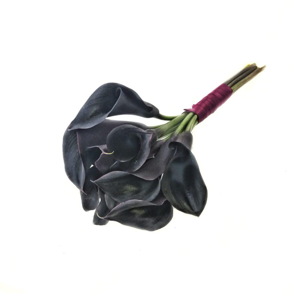 Купить цветы черные каллы в москве, цветы