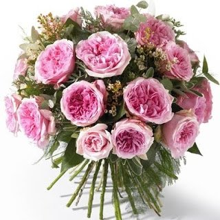 25 роз Миранда