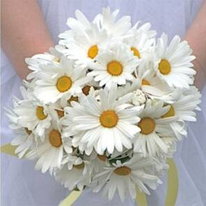 Букет невесты из садовых ромашек