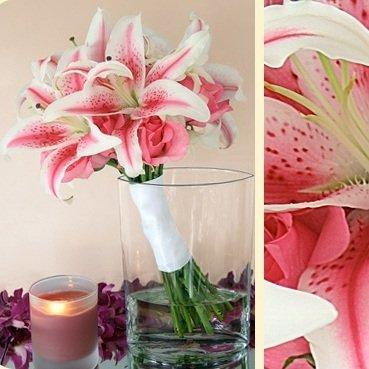 Модные лилии