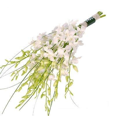 белый букет невесты из орхидей