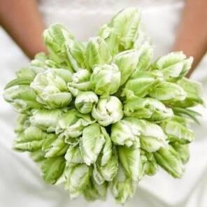 Букет невесты из зеленых тюльпанов