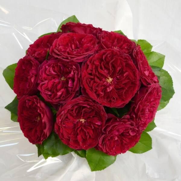 Букет невесты из роз Дарси