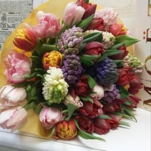 Гиацинты и тюльпаны