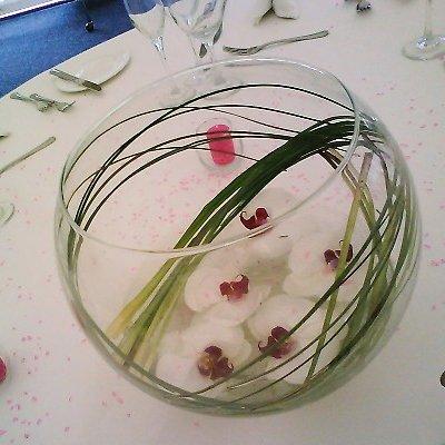 Фаленопсис в стекле