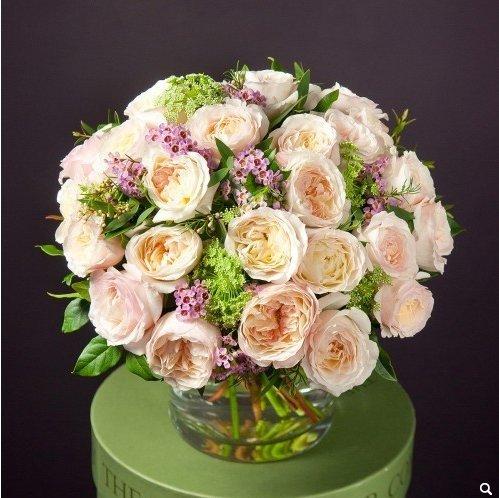 Букет из роз Кейра 25 штук