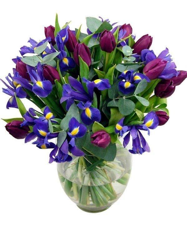 Букет из ирисов и бордовых тюльпанов