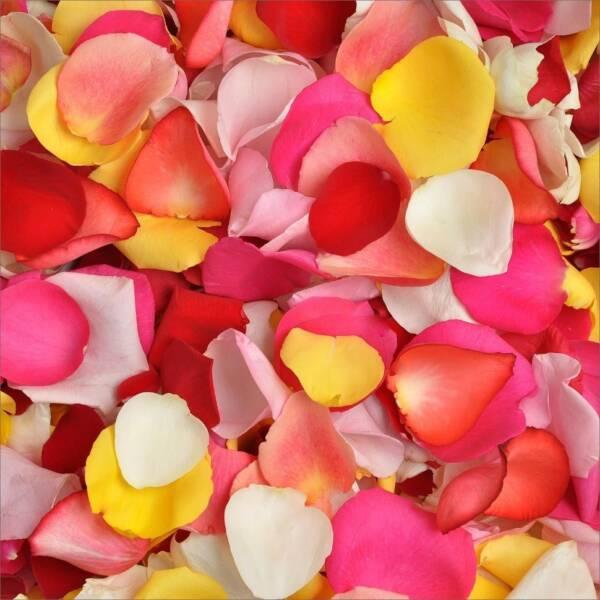 Лепестки роз микс 20 литров