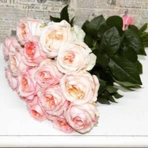15 роз анджи романтика