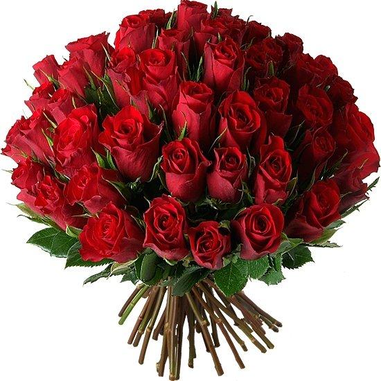Букет из красных роз Ред Калипсо