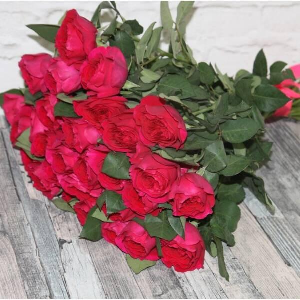Охапка роз Дарси