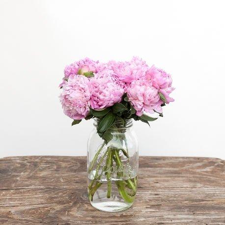 Монобукет из розовых пионов