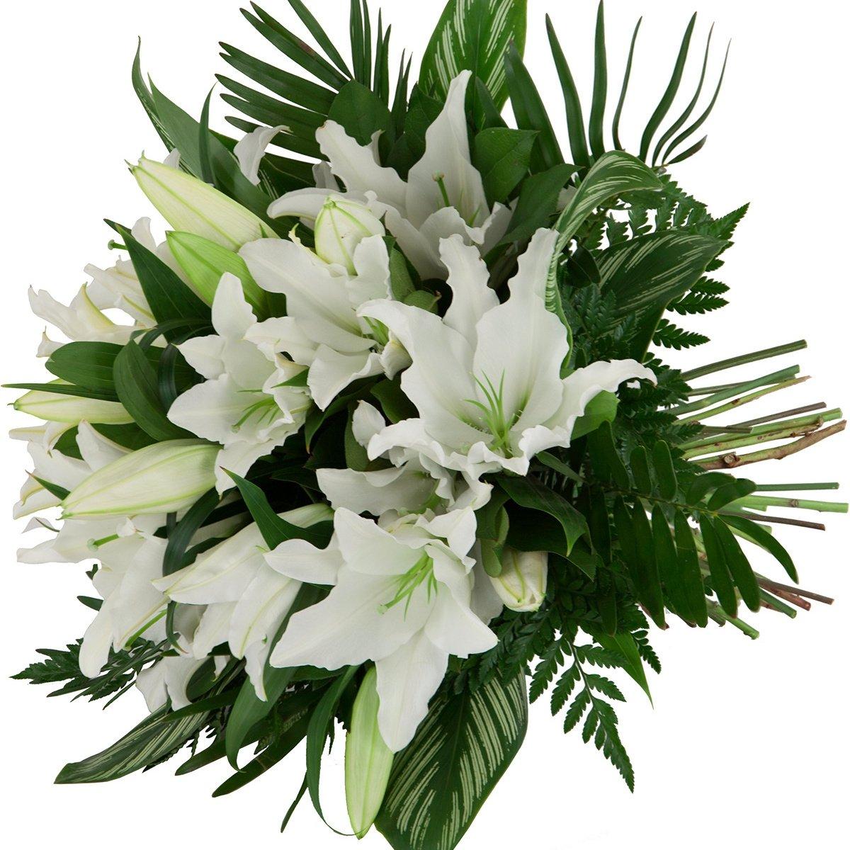 этого можете красивый букет белые лилии фото самыми распространенными являются