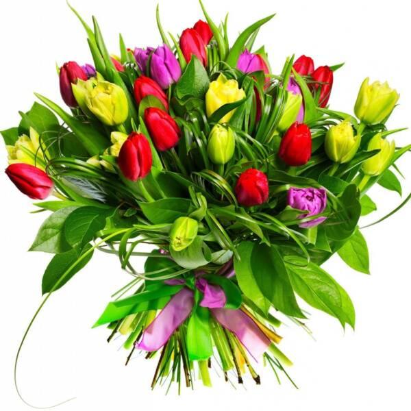 35 разноцветных тюльпанов