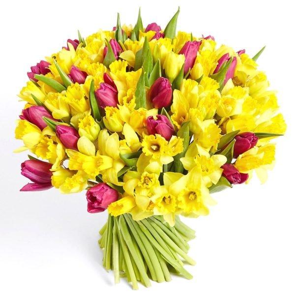 Тюльпаны и желтые нарциссы