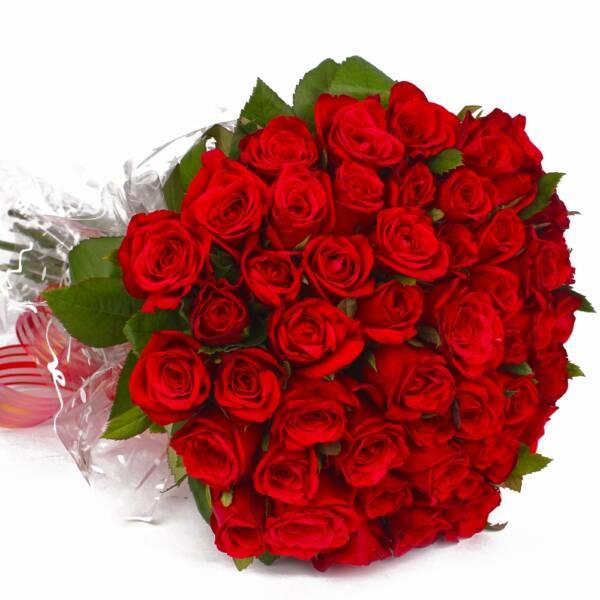 55 красных роз 70 см