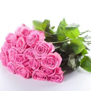 23 розы аква 60 см